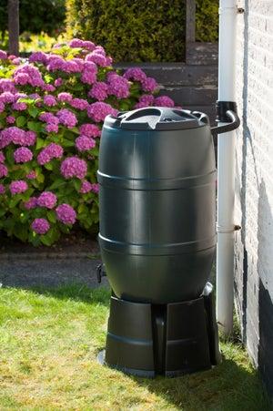 Image : Récupérateur d'eau aérien cylindrique vert , 120 l