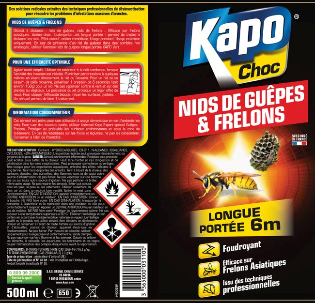 Insecticide Aerosol Guepes Et Frelons Kapo 500 Ml Leroy Merlin