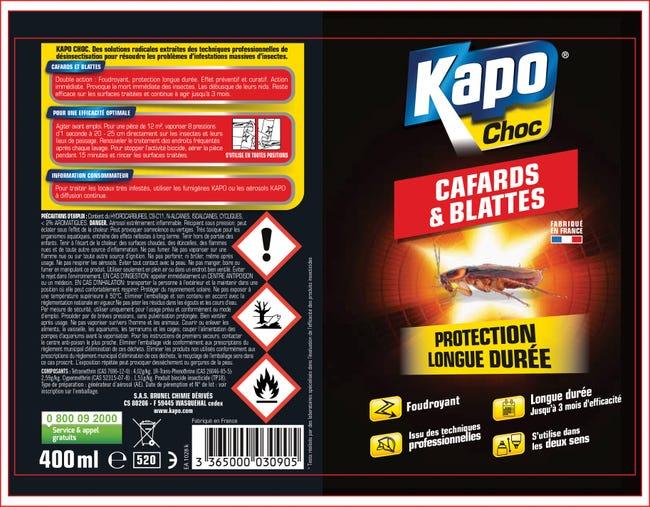 Insecticide Aerosol Cafards Et Blattes Kapo 400 Ml Leroy Merlin