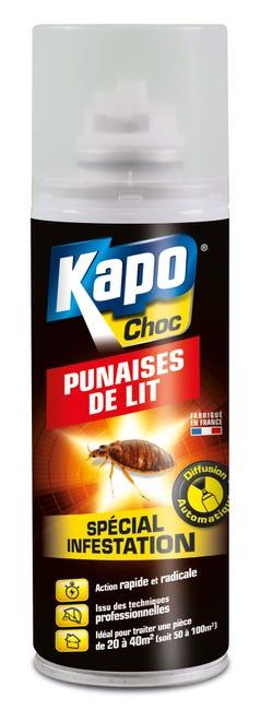 Aerosol Insecticide Pour Punaises De Lit Kapo 0 2 Leroy Merlin