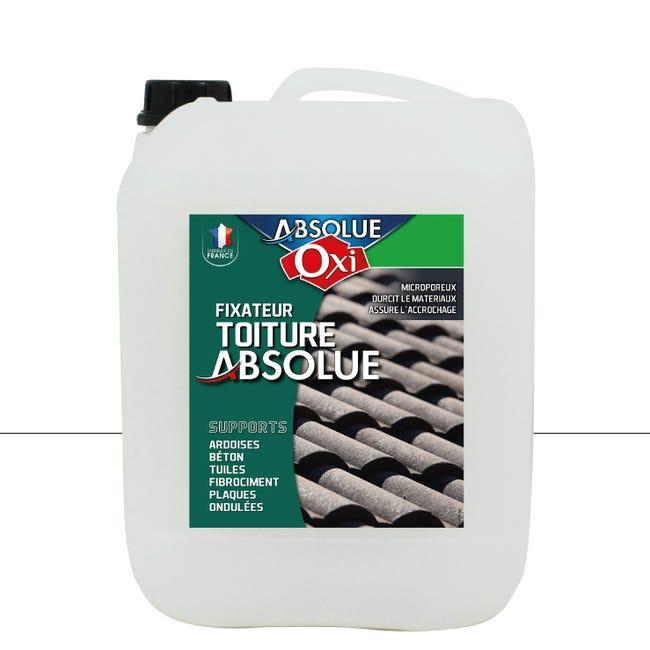 Fixateur De Peinture Toiture Exterieur Targol Oxytol Incolore 10 L Leroy Merlin