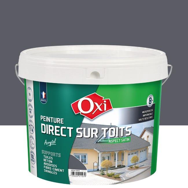 Peinture Toiture Exterieur Acrytol Oxytol Ardoise 10 L Leroy Merlin