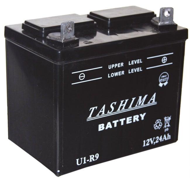 Batterie Plomb Tashima Pour Tondeuse Autoportée 12v 24a à Droite